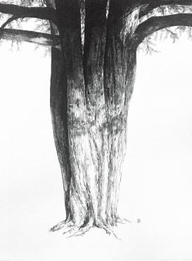 ellington-tree-3-950pxw