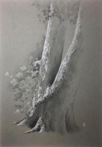Ellington Tree